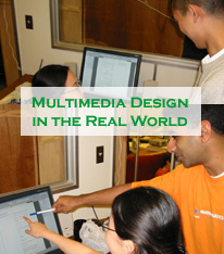 Multimedia Design in the Real World